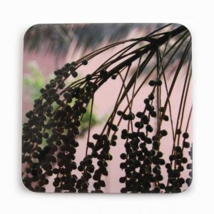 Young Dates Coaster